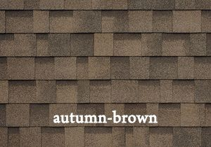 autumn-brown