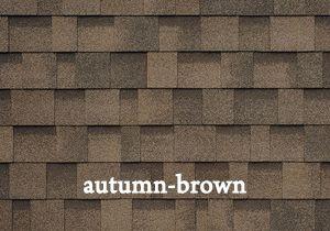autumn-brown